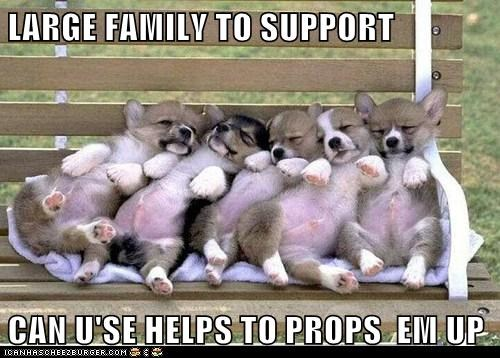 LARGE FAMILY TO SUPPORT  CAN U'SE HELPS TO PROPS  EM UP