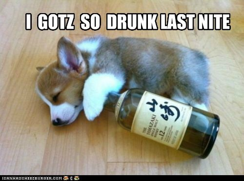 I  GOTZ  SO  DRUNK LAST NITE