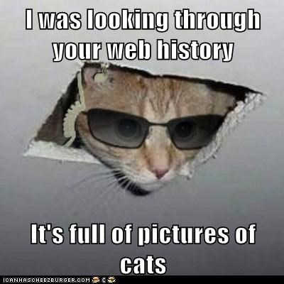 I was looking through your web history  It's full of pictures of cats