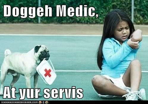 Doggeh Medic,   At yur servis