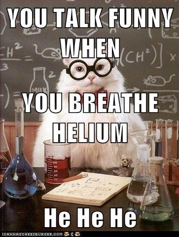Animal Memes: Chemistry Cat - The Elements of Humor