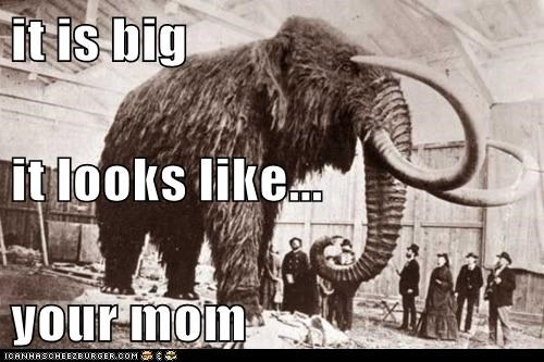 it is big  it looks like... your mom