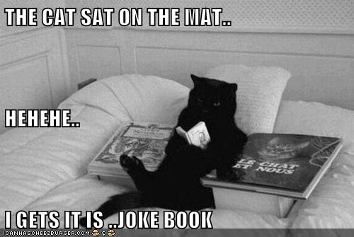 THE CAT SAT ON THE MAT.. HEHEHE.. I GETS IT IS ..JOKE BOOK