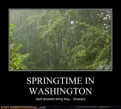 SPRINGTIME IN WASHINGTON