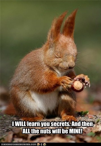 I WILL learn you secrets. And then ALL the nuts will be MINE!