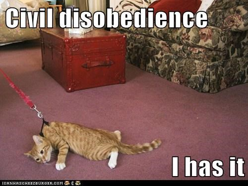 Civil disobedience  I has it