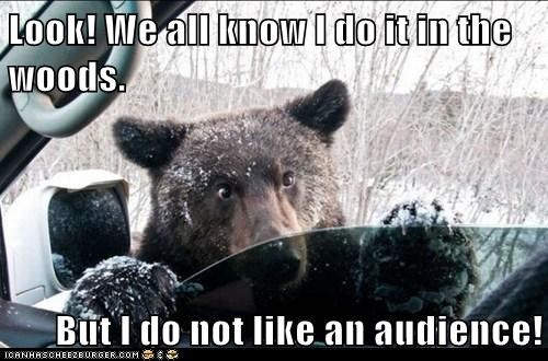 audience,bears,car,do you mind,poop,privacy,st-in-the-woods