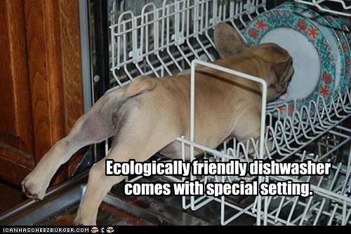 New Dishwasher Setting
