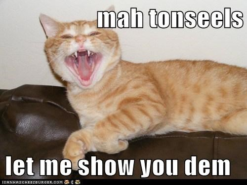 mah tonseels  let me show you dem