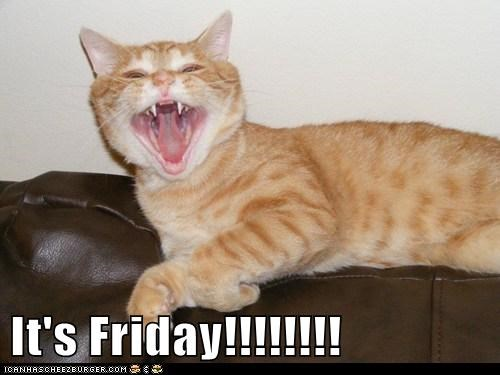 It's Friday!!!!!!!!