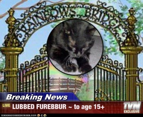 Breaking News - LUBBED FUREBBUR ~ to age 15+