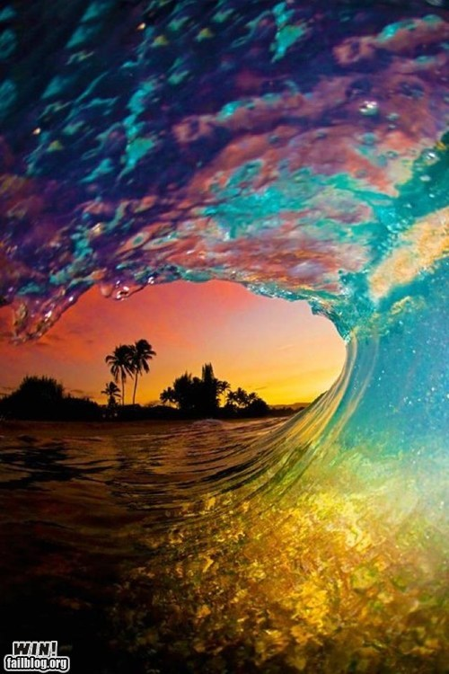 WIN!: Sunset Wave WIN