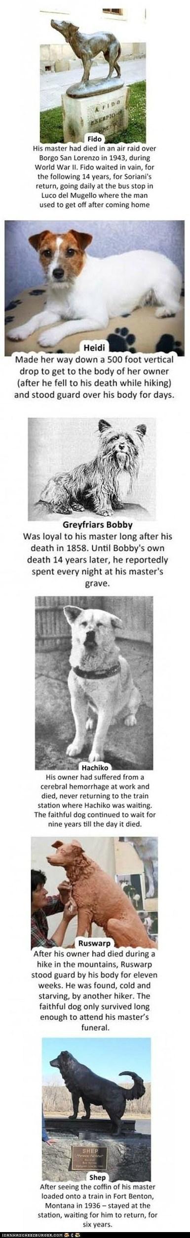 Death,dogs,inspiring,loyal,loyalty,mans-best-friend,Sad,sweet
