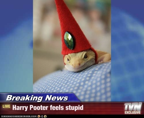 Breaking News - Harry Pooter feels stupid