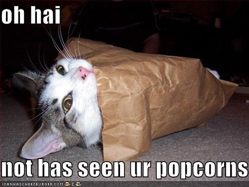 oh hai  not has seen ur popcorns