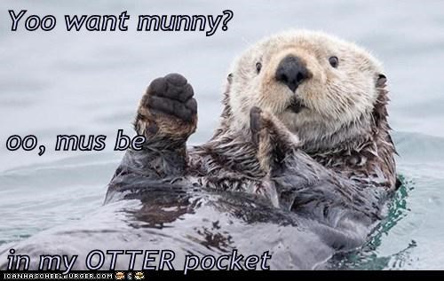 Yoo want munny? oo, mus be in my OTTER pocket