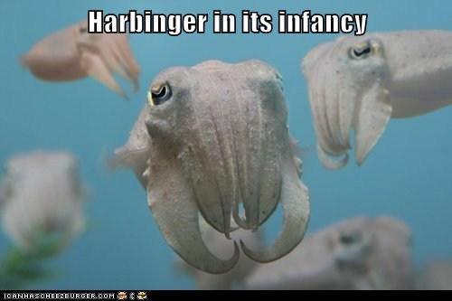 Harbinger in its infancy