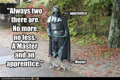 apprentice,best of the week,cat,darth vader,master,no more,owner,point,sith,star wars