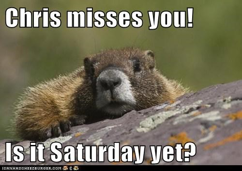Chris misses you!  Is it Saturday yet?