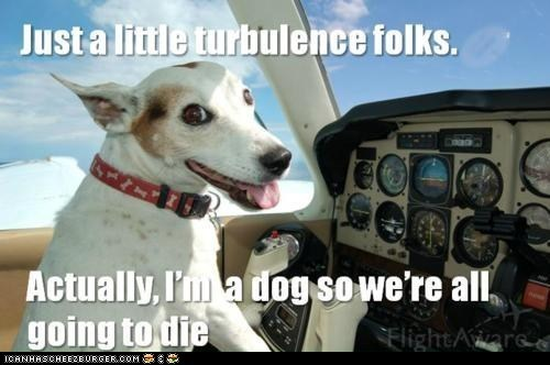 Death,dogs,flying,memebase,Memes,pilots,planes,turbulence