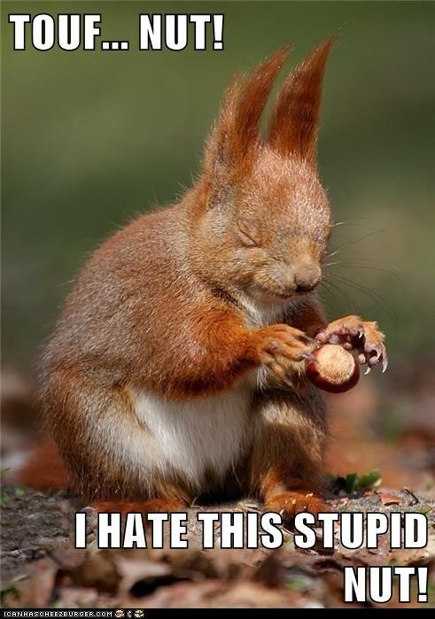 TOUF... NUT!  I HATE THIS STUPID NUT!