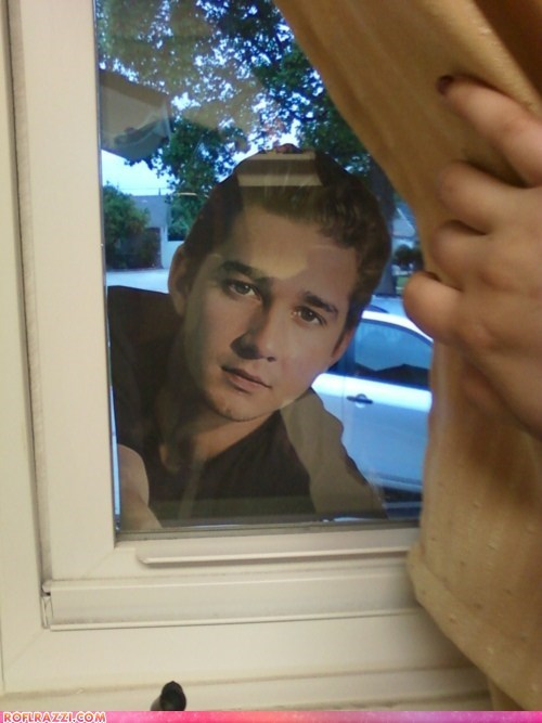 Sooner or Later... Shia Labeouf