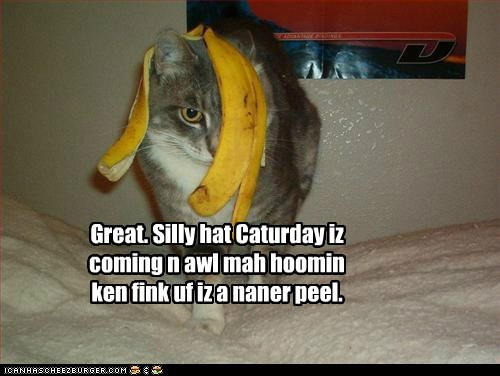 Silly Hat Saturday is coming.