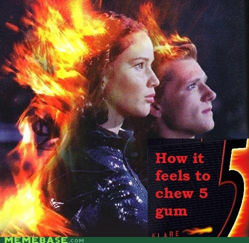gum,mockingjay,fire,hunger games