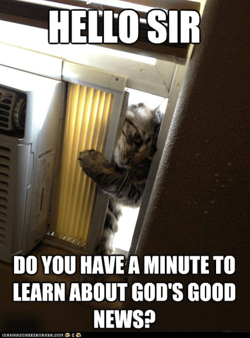 best of the week,Cats,god,jehovah,jehovahs witnesses,news,religion
