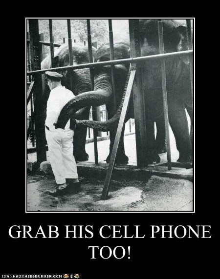 GRAB HIS CELL PHONE TOO!
