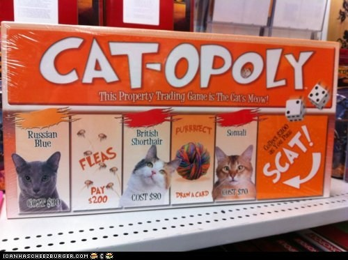 board games,catopoly,Cats,games,monopoly