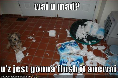 wai u mad?  u'z jest gonna flush it anewai