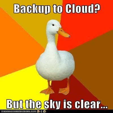 backup,cloud storage,clouds,ducks,Memes,sky,technologically impaired,Technologically Impaired Duck,technology