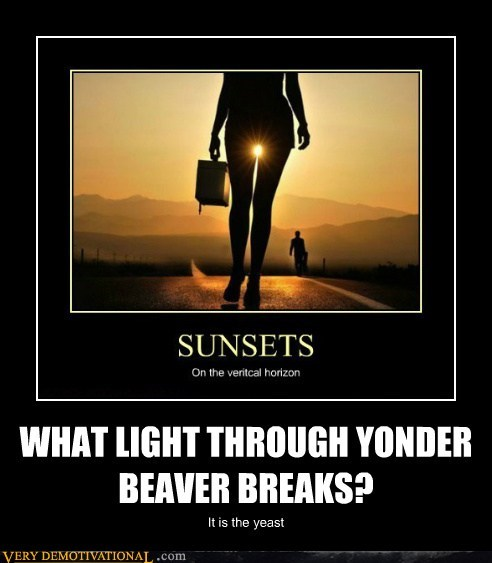 WHAT LIGHT THROUGH YONDER BEAVER BREAKS?
