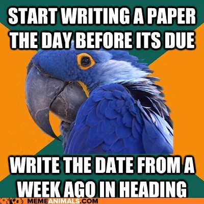 Paranoid Parrot: Don't Want to be Marked Down for Procrastination
