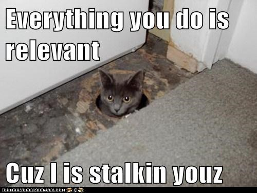 Everything you do is relevant  Cuz I is stalkin youz
