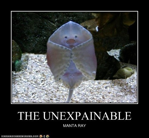 THE UNEXPAINABLE