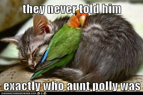 they never told him  exactly who aunt polly was