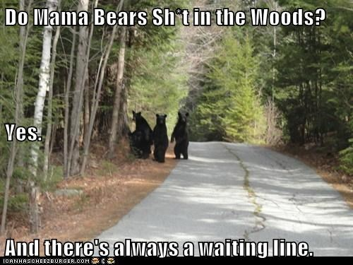 Do Mama Bears Sh*t in the Woods? Yes. And there's always a waiting line.