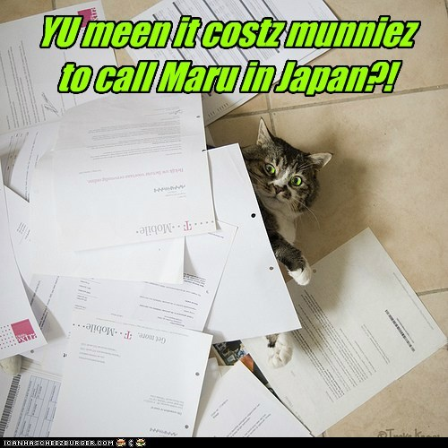 YU meen it costz munniez  to call Maru in Japan?!