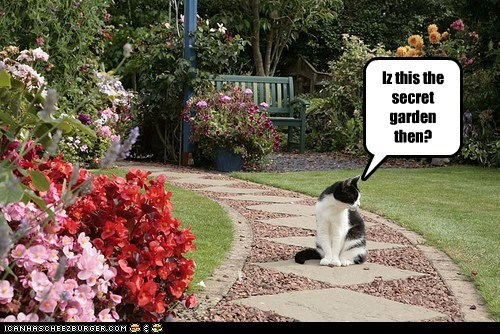 Iz this the secret garden then?