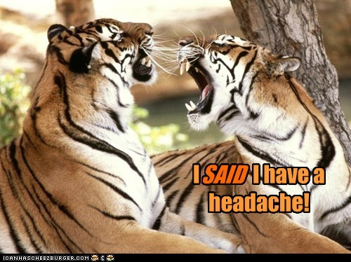 I SAID I have a headache!