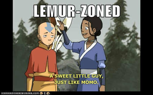 LEMUR-ZONED