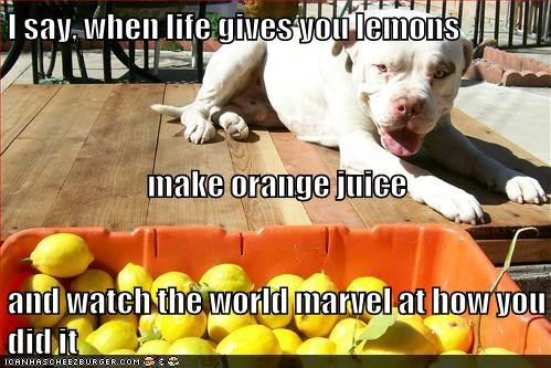 I say, when life gives you lemons make orange juice and watch the world marvel at how you did it