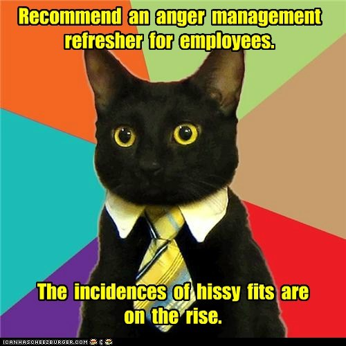Animal Memes: Business Cat - Let's Address This Problem Before It Escalates to Shoe-Pooping