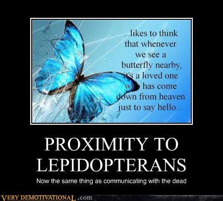 PROXIMITY TO LEPIDOPTERANS