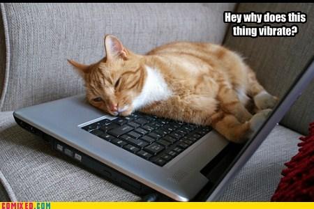 Keyboard Kat!!!