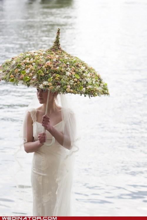 flowers,funny wedding photos,umbrella