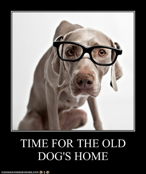 TIME FOR THE OLD DOG'S HOME