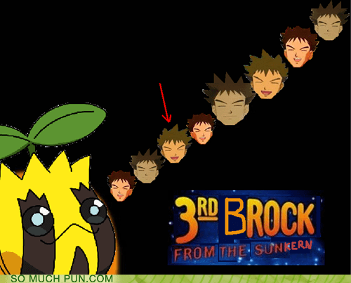 3rd rock from the sun,brock,Hall of Fame,literalism,Pokémon,rock,show,similar sounding,sun,sunkern,television
